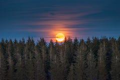 Луна, не солнце стоковая фотография