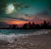 Луна, океан и пальмы бесплатная иллюстрация