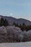 Луна поднимая на морозное утро Стоковое Изображение