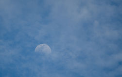 Луна утра Стоковая Фотография