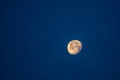 Луна Стоковые Фото