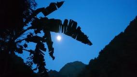 Луна стоковое изображение
