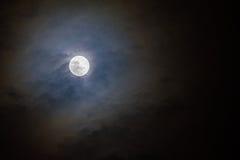 Луна Стоковые Изображения