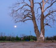 Лунный ландшафт Стоковая Фотография RF