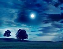 лунный свет ландшафта Стоковое Изображение