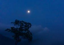 Лунный свет на ноче на запачканной горе, Стоковые Изображения