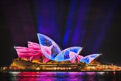 Лучей медуз Sy яркие 17 Op бортовых Стоковая Фотография