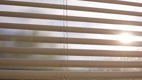 Лучи солнца делают их путь через шторки в вечере на заходе солнца видеоматериал