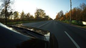 Лучи Солнца погибают через деревья на автомобиле, который управляет на шоссе видеоматериал