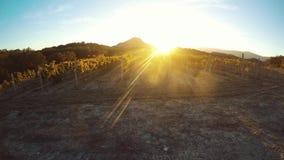 Лучи Солнца проходят через grapeyard на тенях сумрака следуют на том основании промежуток времени акции видеоматериалы