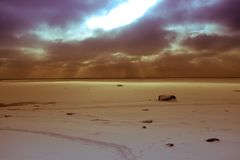 Лучи Солнця над морем Стоковое фото RF