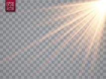 Лучи Солнця с лучами на прозрачной предпосылке Золотистая фара Вспышка Солнця также вектор иллюстрации притяжки corel иллюстрация штока