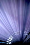 лучи Стоковые Фото