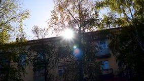 Лучи ` s солнца теплые делают их путь через листву на день осени видеоматериал