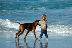 лучшие друг Стоковое Фото