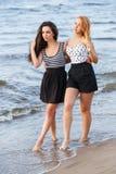 Лучшие други на пляже Стоковые Изображения RF