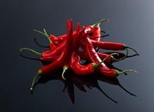 Луч перца красных чилей Стоковые Фото