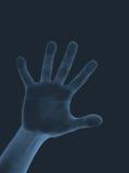 луч s x руки Стоковое Изображение RF