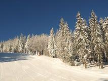 лыжа бега piste Стоковая Фотография