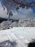 Лыжа выплескивает Стоковые Изображения