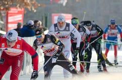 лыжа гонки страны перекрестная Стоковые Фото