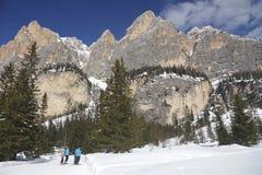 Лыжа и горы Стоковые Изображения