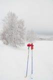 лыжа красного цвета полюсов перчаток Стоковые Фотографии RF