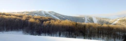 лыжа курорта Стоковые Изображения RF