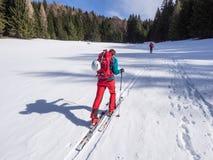 Лыжа путешествуя деятельность при зимы Стоковые Изображения RF