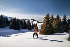 Лыжа путешествуя на свежем снеге порошка стоковое изображение