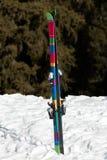 лыжа Стоковое Изображение