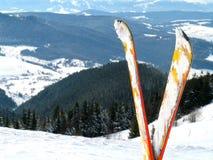 лыжа Стоковые Фото