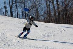 лыжа Стоковая Фотография