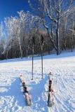 лыжи полюсов Стоковое фото RF