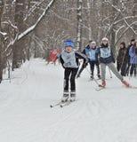 Лыжники на гонке лыжи стоковая фотография rf