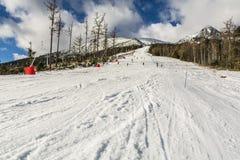 Лыжники на piste стоковое фото
