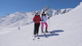 Лыжники увидели что-то интересное в долине горы и одине другого выставки сток-видео