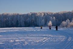 лыжники Стоковые Изображения