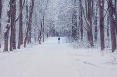 Лыжник на морозном утре в парке города стоковые изображения rf