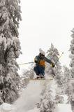 Лыжник Freeride Стоковые Фото