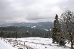 Лыжный курорт Bukovel, Украина Стоковые Фотографии RF