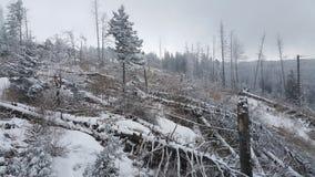 Лыжный курорт Vitosha Стоковая Фотография