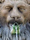 львев фонтана Стоковая Фотография RF