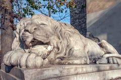 Львов Стоковые Изображения