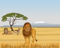 Львы гордости в саванне иллюстрация вектора