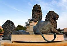 львы фонтана Стоковая Фотография