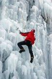 льдед альпиниста Стоковая Фотография