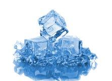льдед блоков Стоковая Фотография