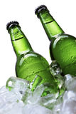 льдед бутылок пива Стоковое фото RF