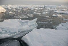 Льдед вокруг приантарктических островов стоковое фото rf